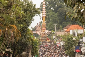 Royal Cremation Ceremony in Ubud with highest bade in world