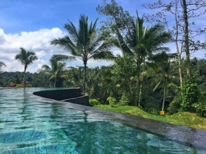 61 Bali hotels for sale in all across the islands